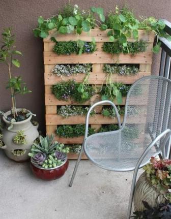 függőleges kert.jpg