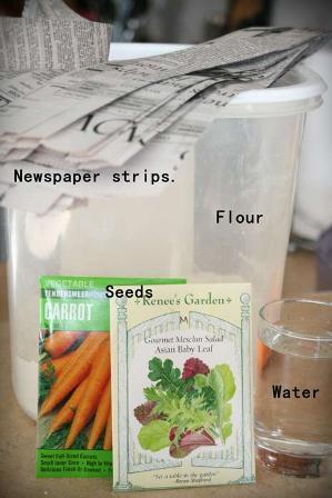 seedstrips1.jpg