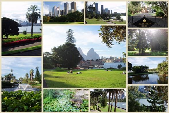 Sydney Botanic Garden2 másolata.jpg