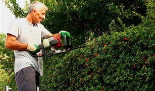 Nyári kertépítés teendő: a sövény nyírása