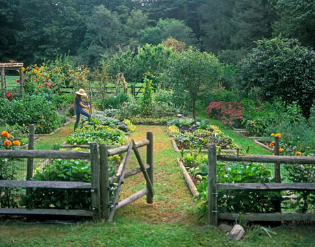 potager-garden-country-living.jpg