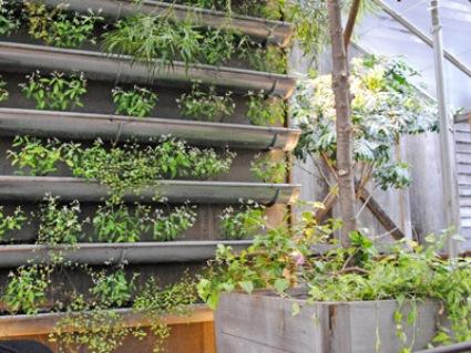 Esőcsatorna darabokból is kialakítható horizontális zöldfelület
