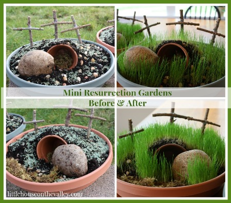 mini-gardens-before-and-after.jpg