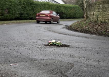 pothole_garden_03.png