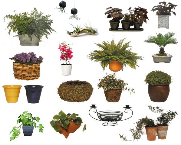 ornamental-pots.jpg