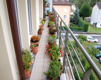 Fiona balcony1.JPG