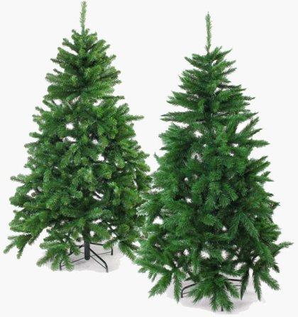 Fenyőfa karácsonyra