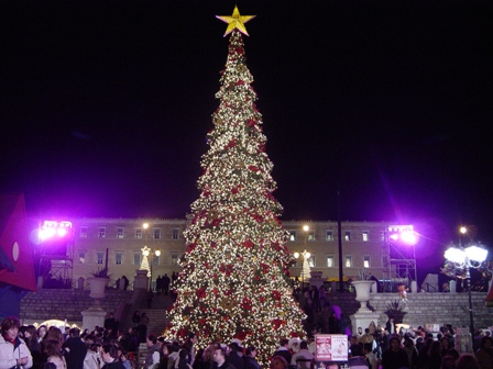 Karácsonyfa rendelés a Megyeri kertészetből!