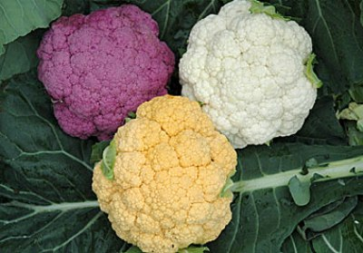 cauliflower.jpg