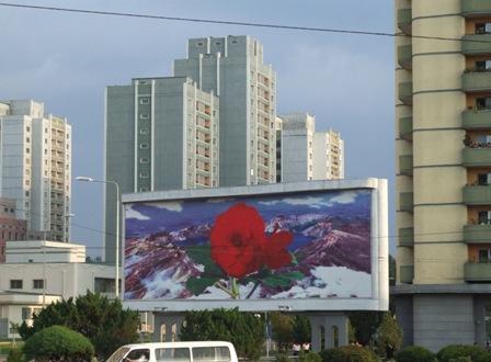 Pyongyang_Propaganda_Kimjongilia.JPG