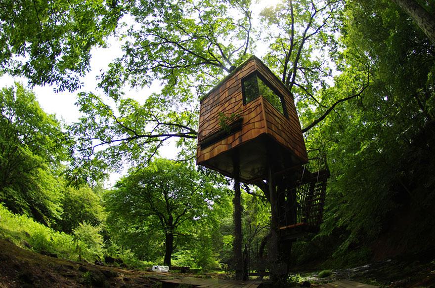 Takashi Kobayashi építész lombháza japánban<br /><br />