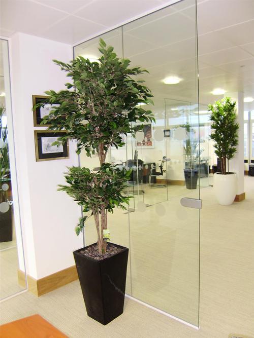 Kevésbé káprázatos, ám elfogadható műnövény a gondozámentes irodai műfa.
