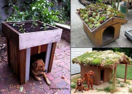 planting-happiness-urban-gardening-2013-rooftop-garderning-dog-houses.jpg