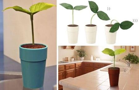 planttalk.jpg