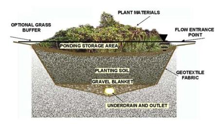 rain-garden-diagram-lrg.jpg