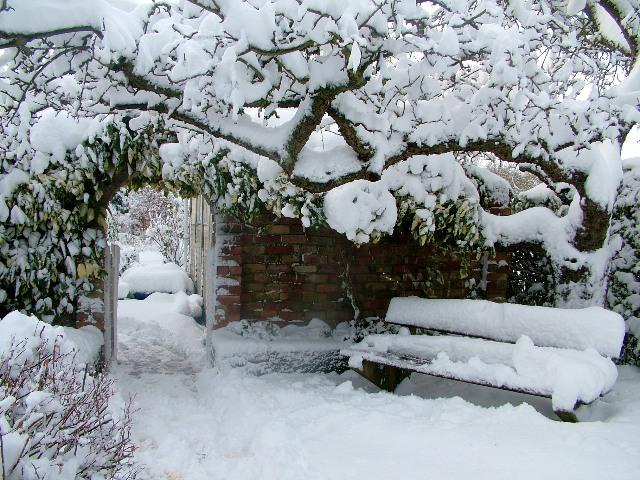 havas_kert.jpg