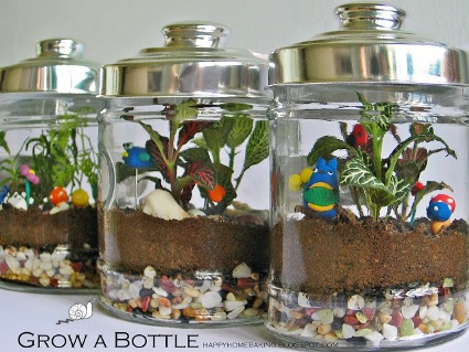 bottle garden 8.JPG