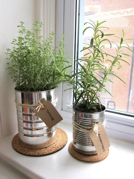 Kitchen-herbs-in-tin-cans..jpg