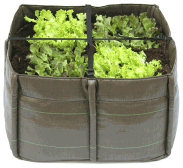 contemporary-indoor-pots-and-planters.jpg