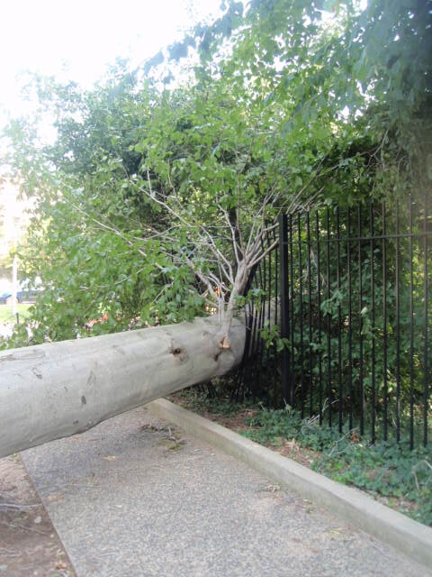 Hurricane-Irene-damage.1.jpg