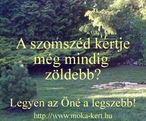 piheno-kert-banner2.png