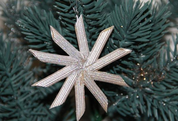 christmas-crafts-kids-tree-ornaments-pasta-silver-star.jpg