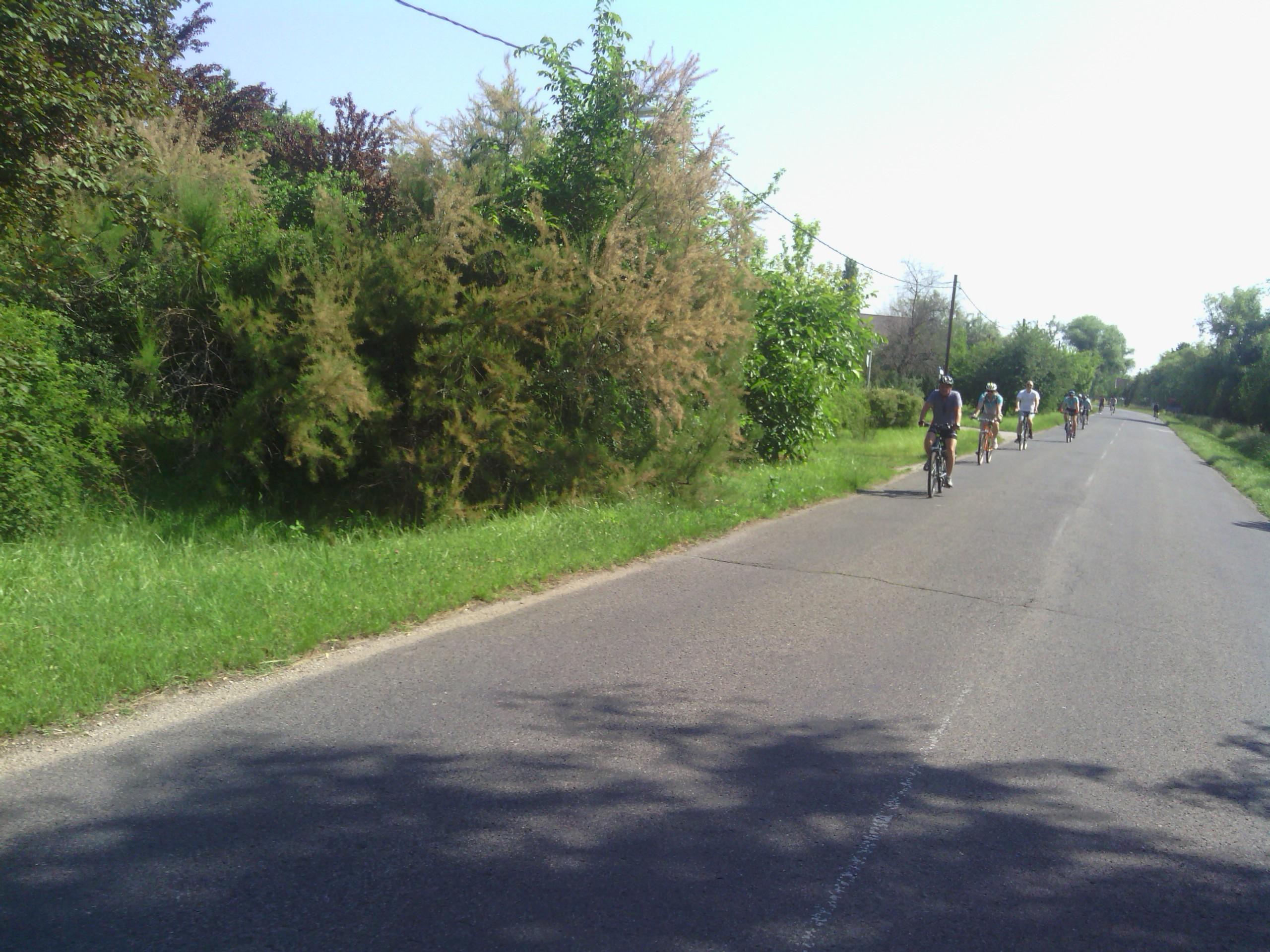 biciklik2.jpg