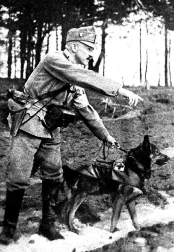 Osztrák-magyar sebesült kutató kutya és vezetője.jpg