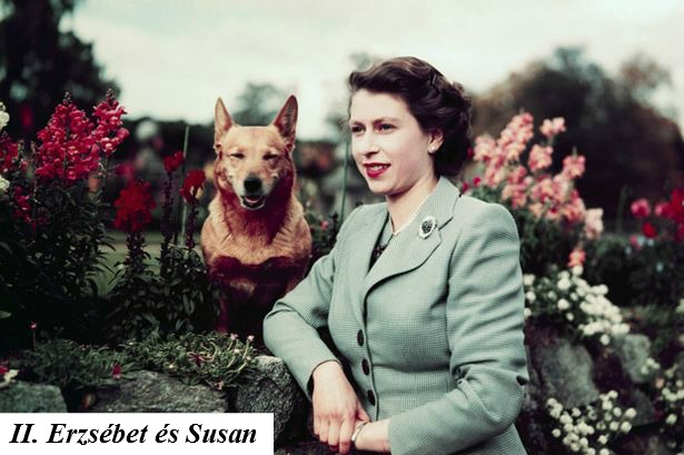 Queen Elizabeth in Garden with Dog.jpg