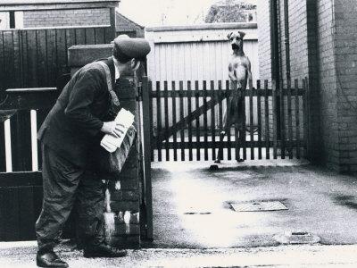 postman-and-dog.jpg