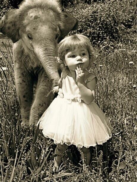 Kislány és a bébielefánt.jpg