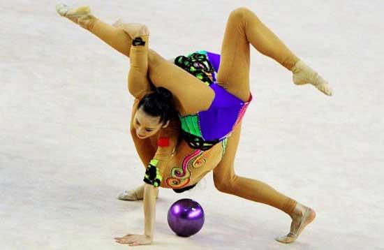 right-angle-dog-gymnastics-spider.jpg