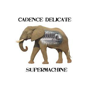 cadence_delicate-_supermachine.jpg