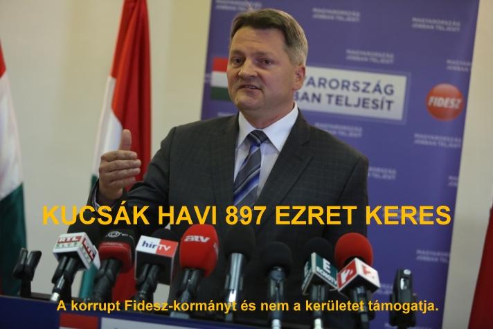 kucsak_897.jpg