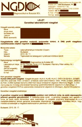 genetikai_laboratoriumi_vizsgalat_genetikai_lelet_336522_blgbjgyzshz_szpvrz_.jpg
