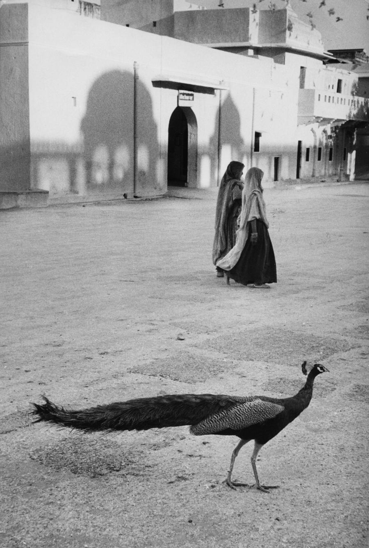 Dzsaipur, India, 1956.jpg