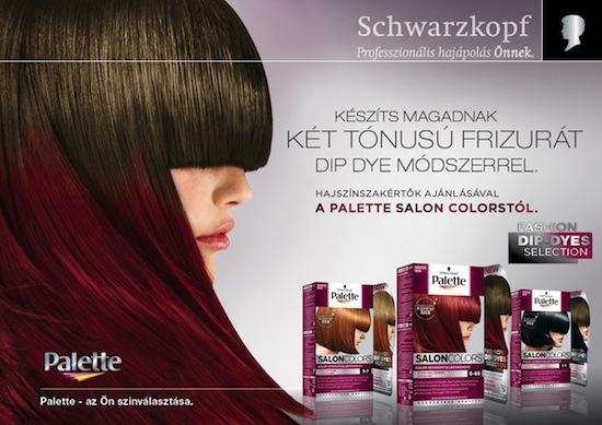Palette Salon Colors DipDyes.jpg