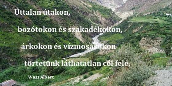 Wass_Albert_uttatalan_utakon.png