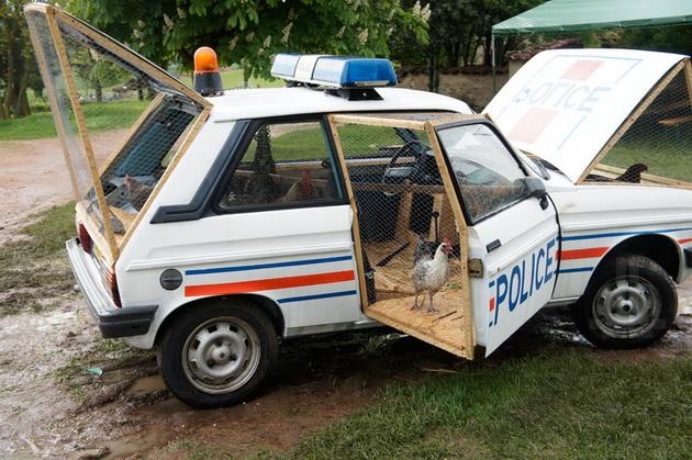 Rendőrautóból tyúkól