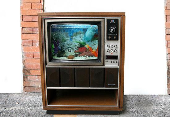 Akváriumtévét a nappaliba?