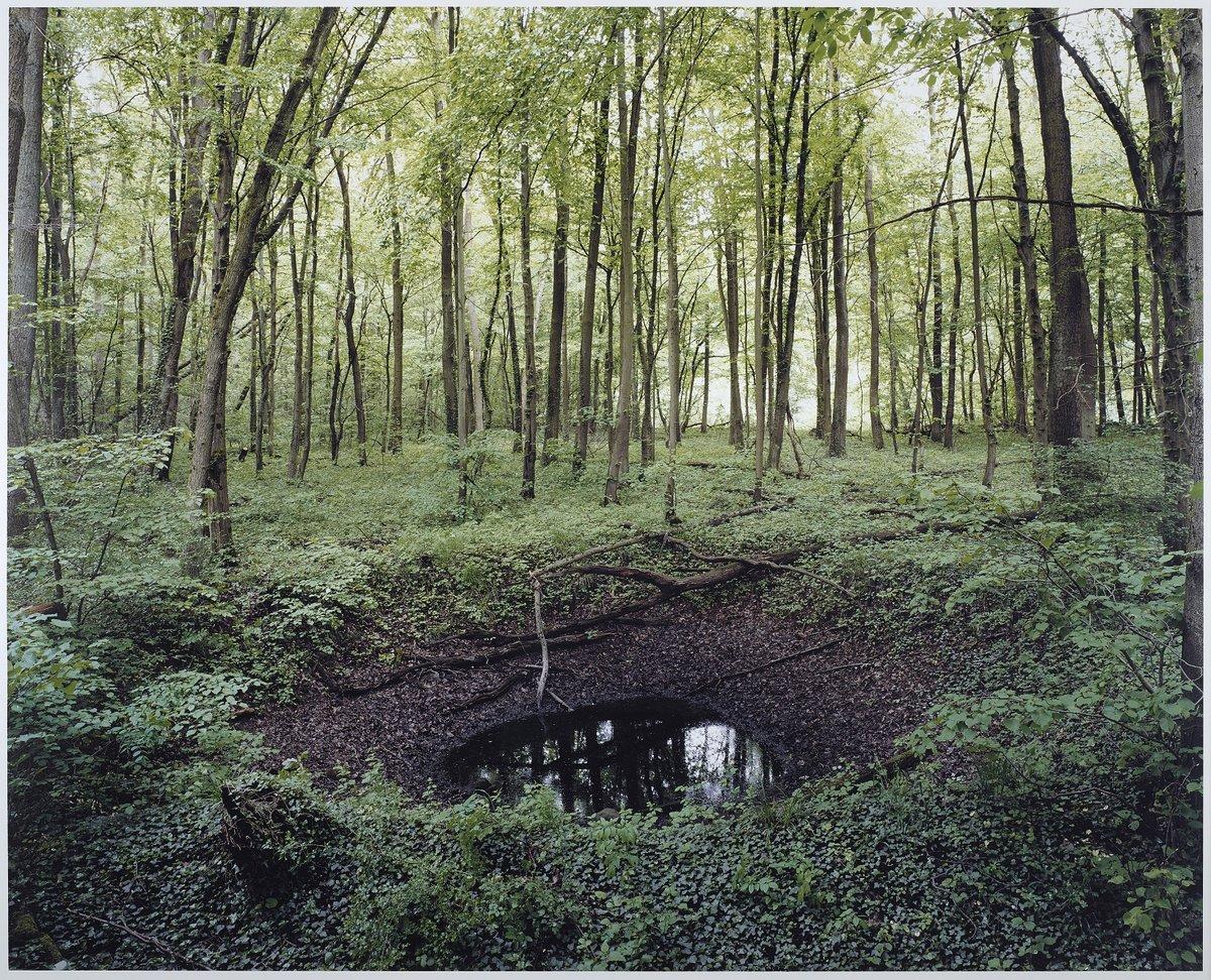 Henning Rogge01.jpg