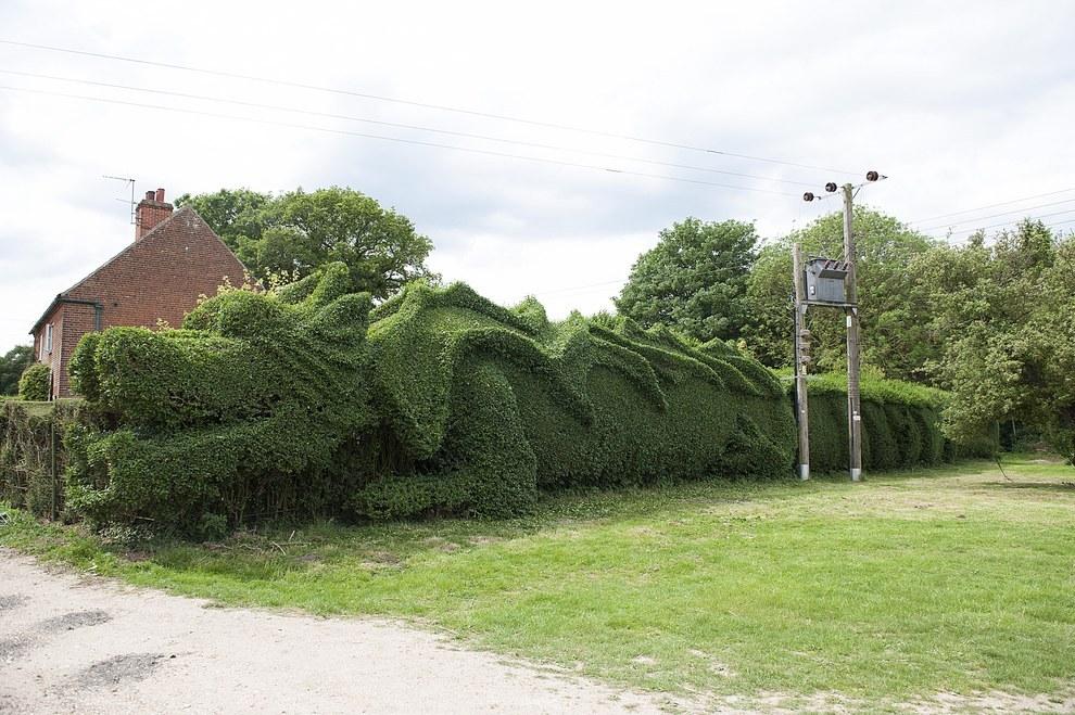 Gigantikus sövénysárkány várja a látogatókat