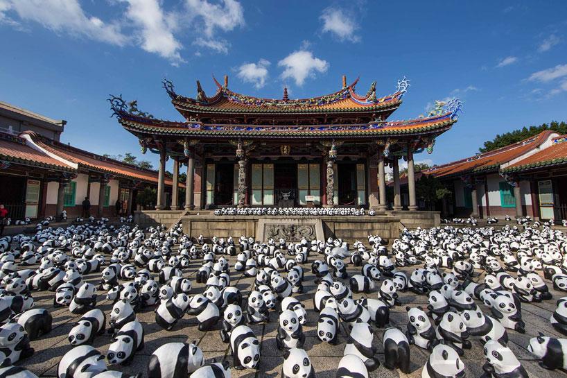 panda02.jpg