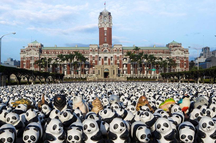 panda03.jpg