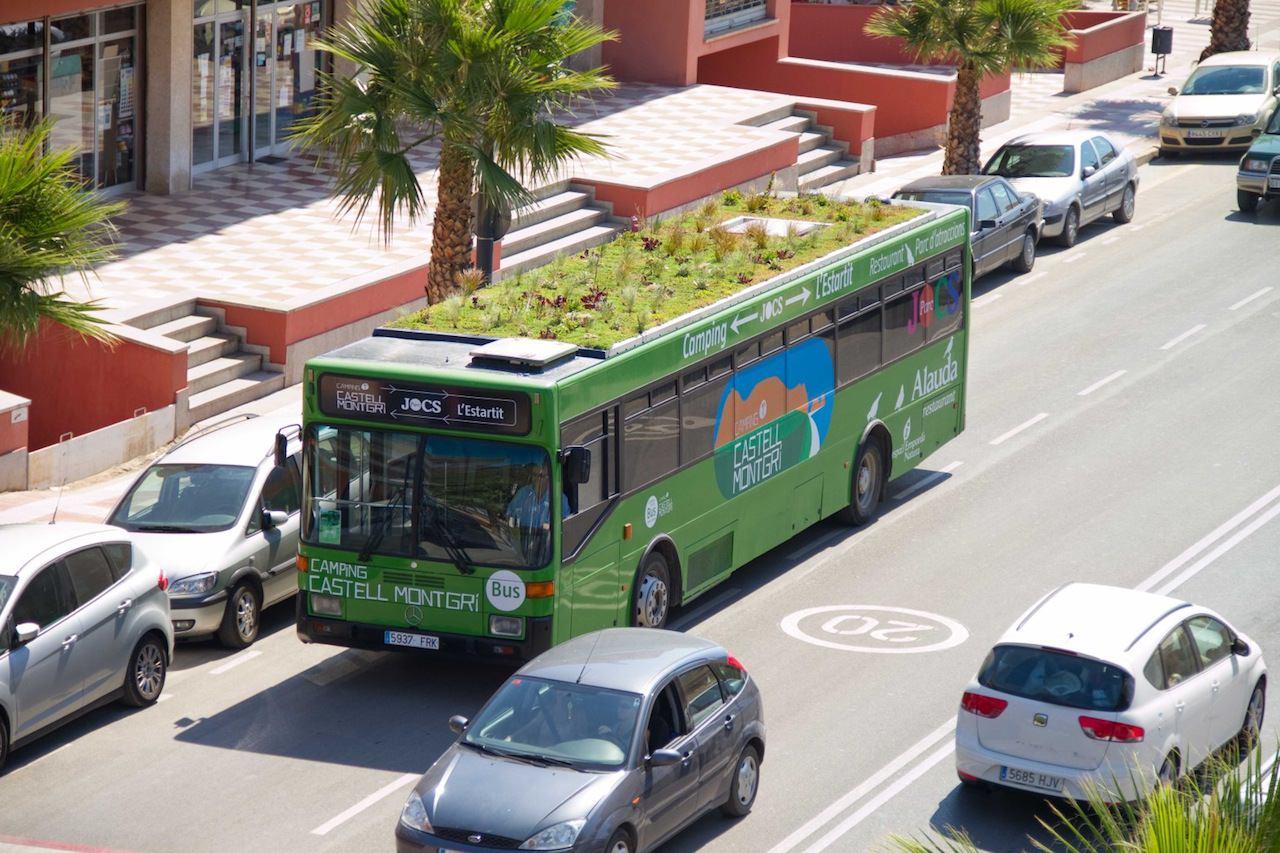 Tömegközlekedő buszok élő tetővel, zöldérzékkel...