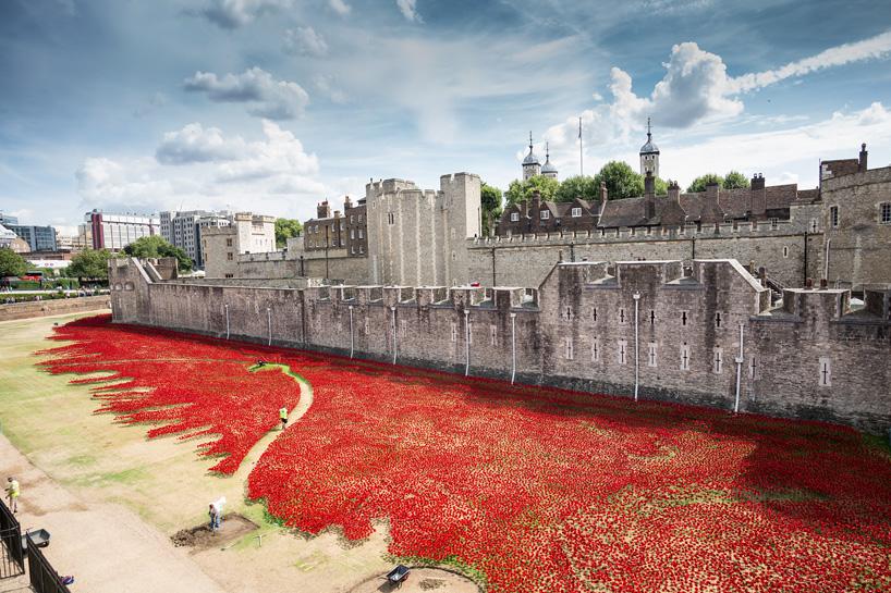 Több százezer emlékpipacs a londoni Towernél