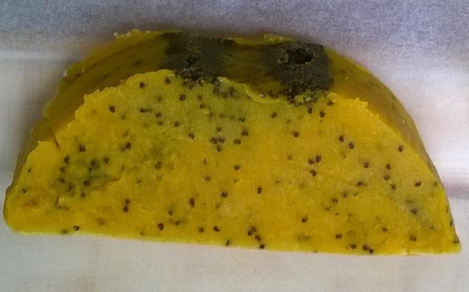 citromos makos kesz.jpg