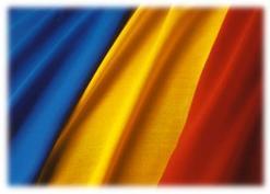 steag-romania_1.jpg