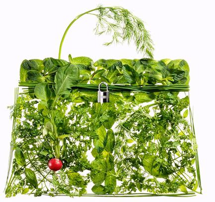 hermes-picnic_bag-greens.jpg