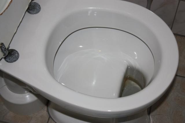German-Toilet.jpg